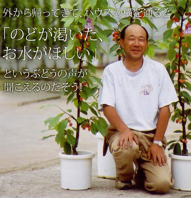 父の日 果物