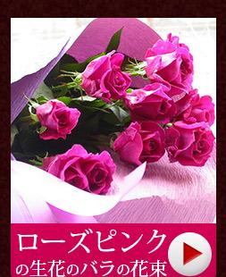 ローズピンクのバラ