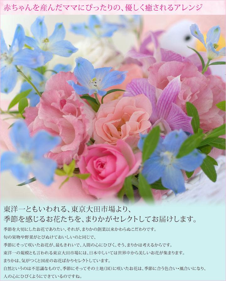 出産祝いの花ギフト
