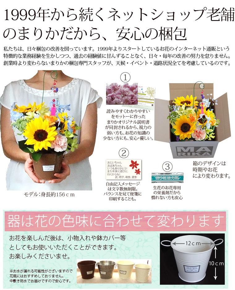 風鈴 花 向日葵