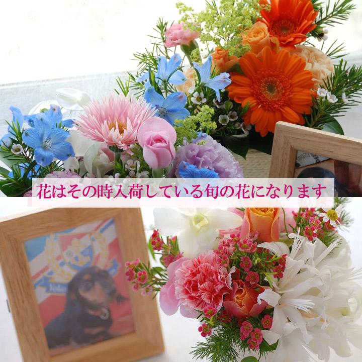 ペットお供えの花