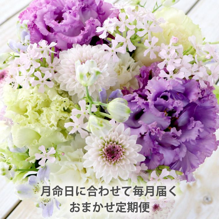 毎月お届け】 お供えの花 『花の定期便(月命日) 空コース6ヶ月』 生花 ...
