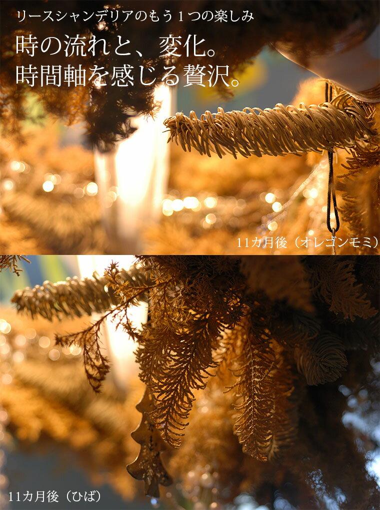 クリスマスフレッシュリース