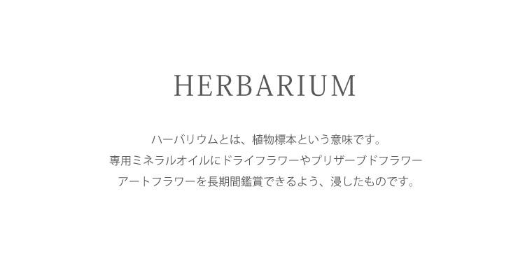 ハーバリウム