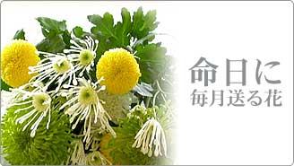 月命日のお供えの花
