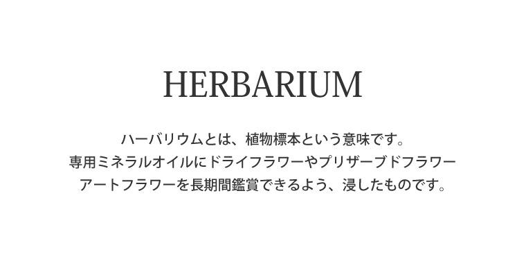 父の日 ハーバリウム